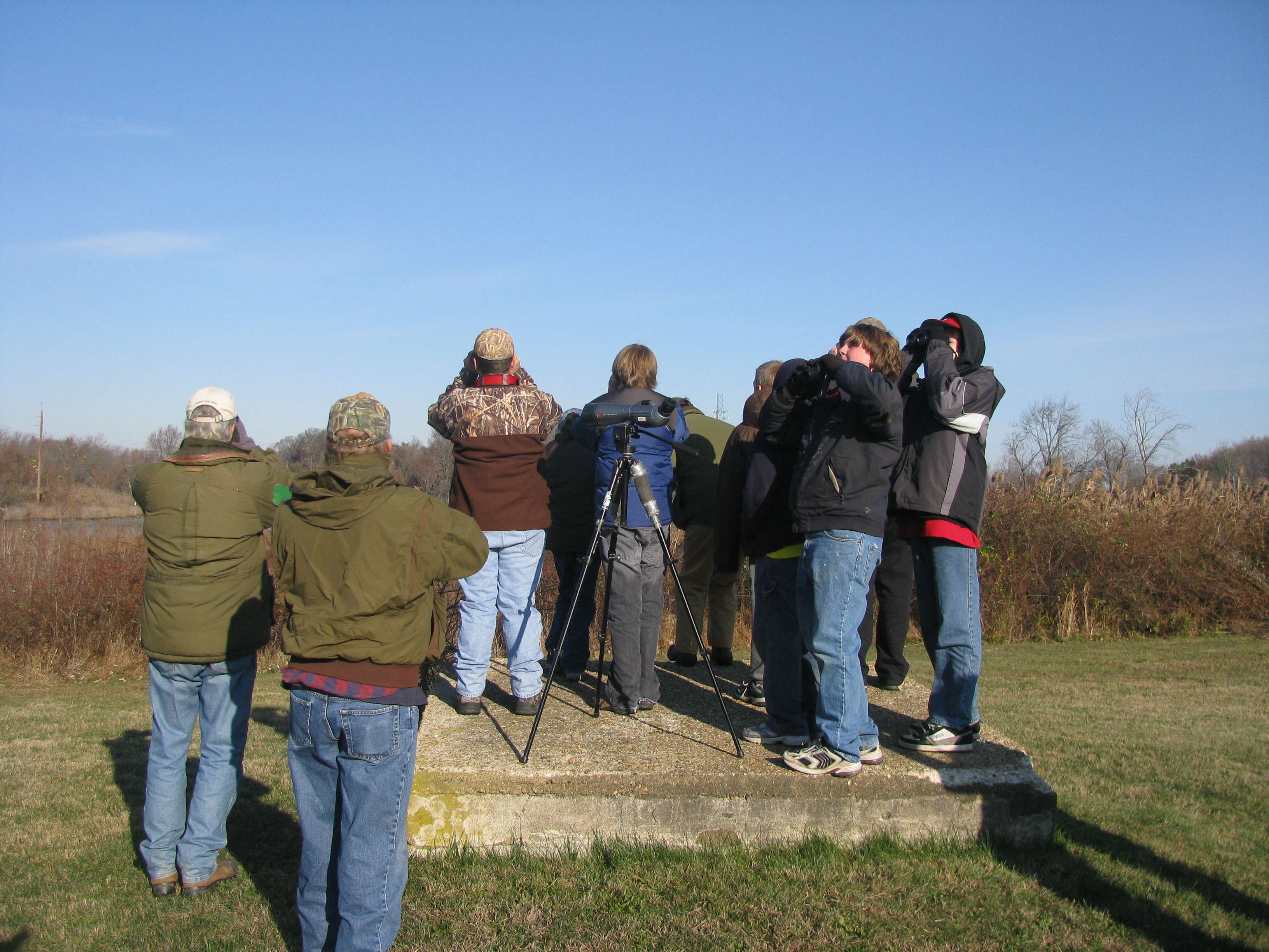 Young Waterfowlers students and parents scan for waterfowl at Dragon Run Marsh.