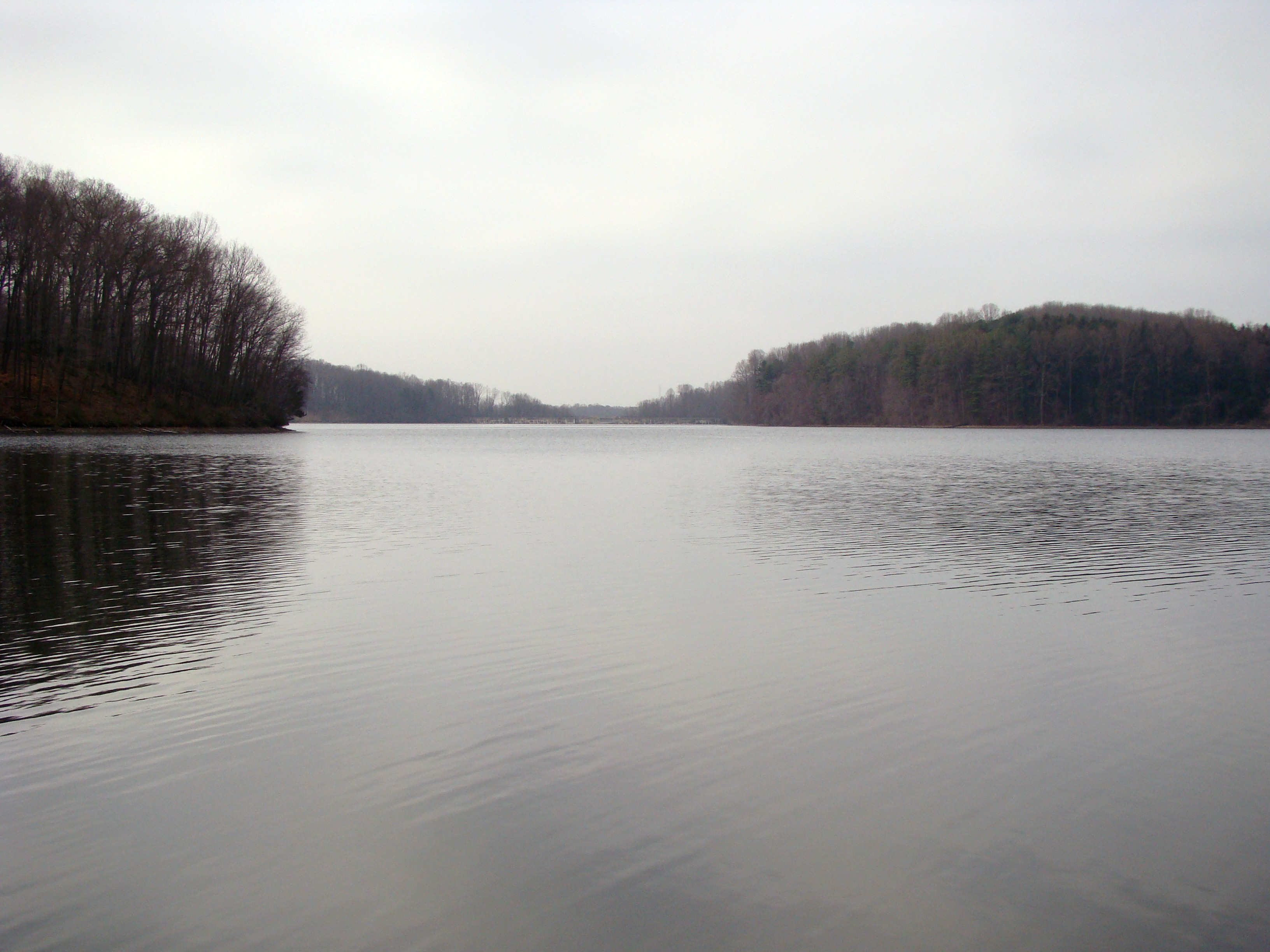 View along the banks of Hoopes Reservoir.