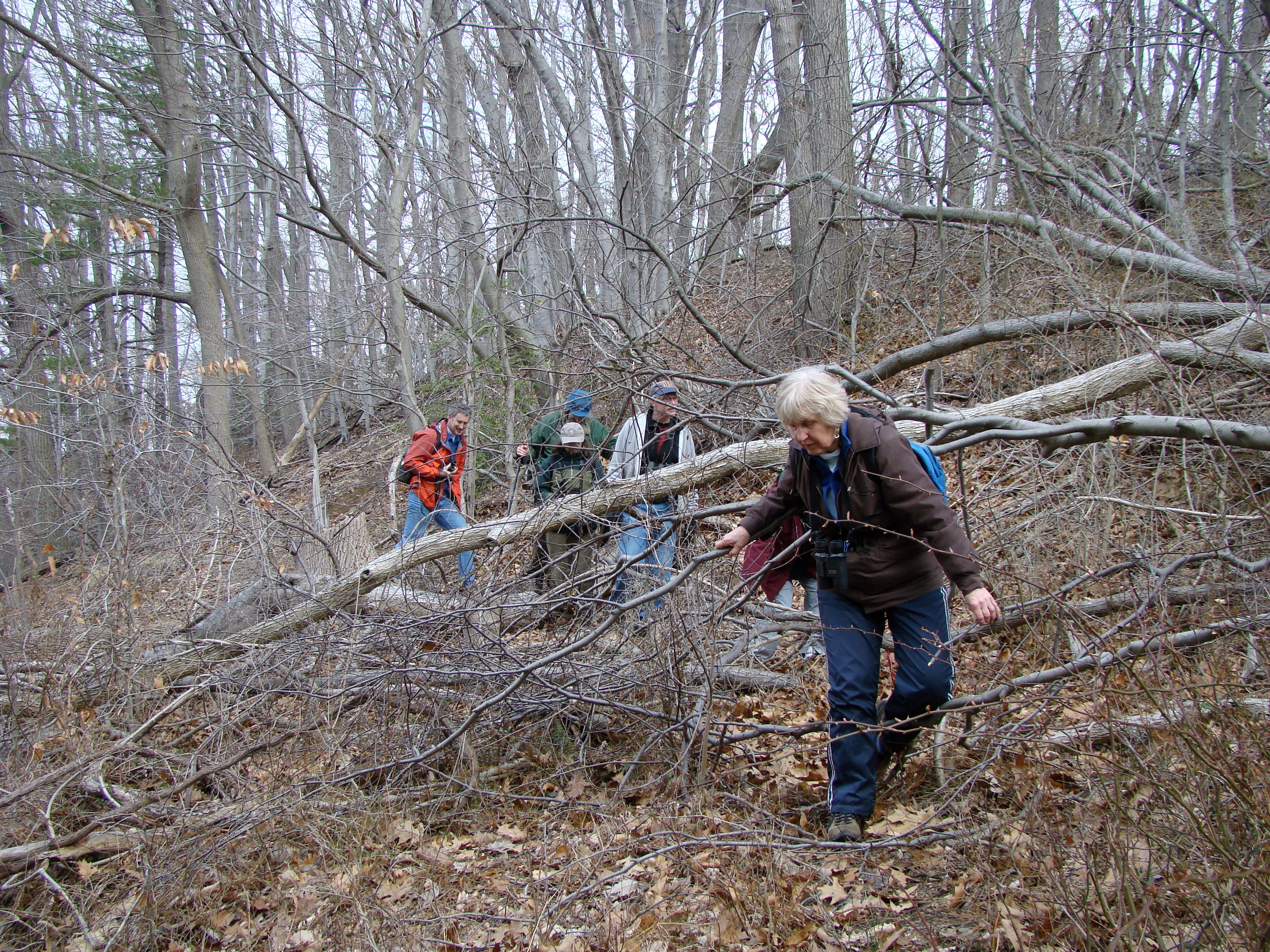 Participants on the Hoopes Reservoir hike scramble through some brush.
