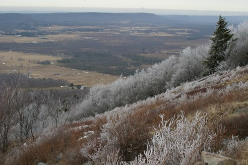 Frost nipped vegetation atop Bald Knob with extended view of Canaan Valley.