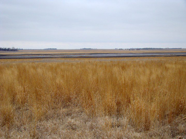 Funk Waterfowl Production Area is a remnant of what much of south-central Nebraska was like.  Prairie and marshland.