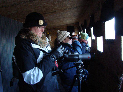 """The group studies Sandhill Cranes that are waking in the Platte River which turned into """"slush-ice"""" overnight."""