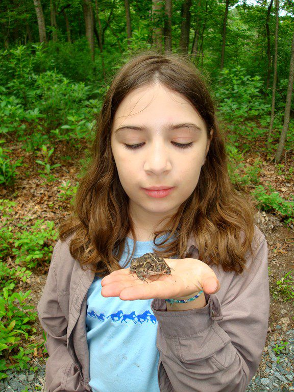 A Fowler's Toad, which is the type of toad you find on Delaware's Coastal Plain.