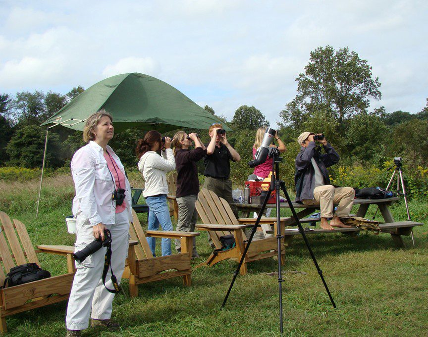 Observers scan the skies for raptors passing the Ashland Hawk Watch.