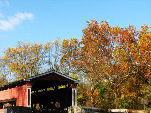 Sycamores and Ash lend brown and yellow to the vibrant red of the Smith's Bridge over the Brandywine River (photo by Derek Stoner 10.25.09)