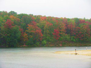 Brightly-hued maples color up the hillside on a rainy day at Parker Dam State Park.