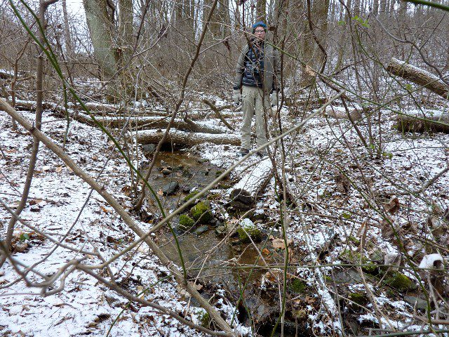 Mike Weaver stands by a small stream at the Flint Woods Preserve.