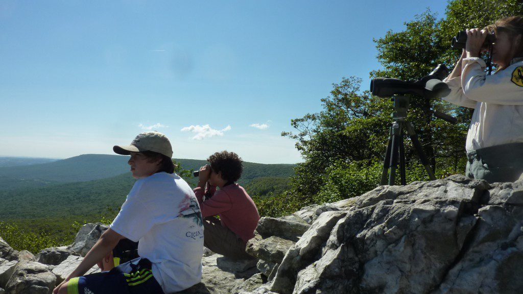 We watched the skies for migrant raptors on the first day of the fall migration count.